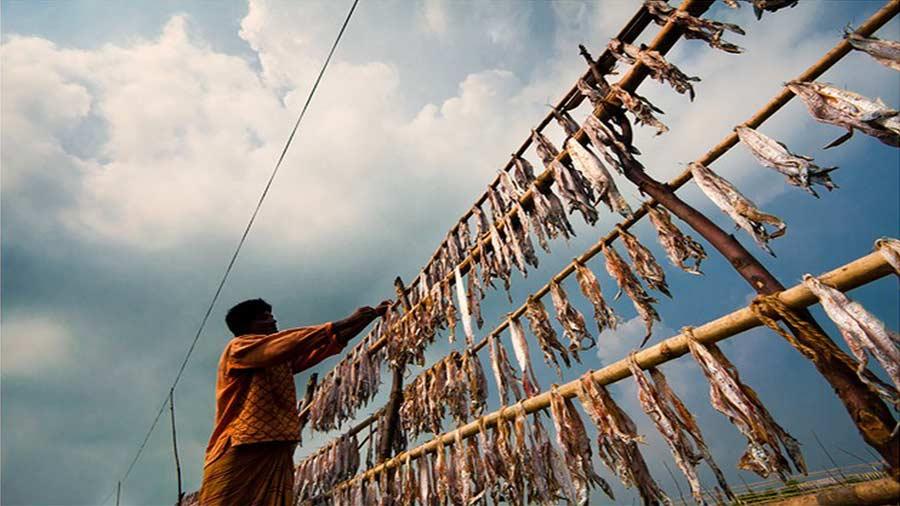 Dublar Chor Island and Fishing Village, Sundorbon, Bangladesh