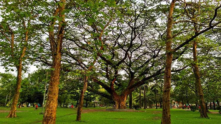 Ramna Park, places to visit in Dhaka, Bangladesh