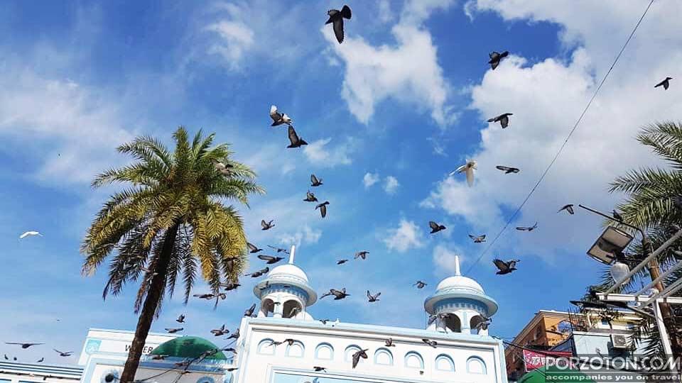 Jalali pigeons are flying in the sky of Shahjalal Mazar (Dargah Sharif), Sylhet.
