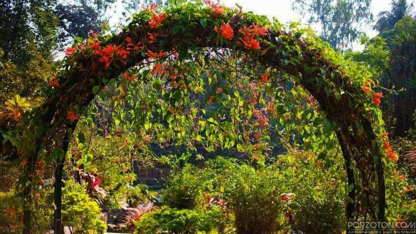 A floral entrance to Baldha Garden, the oldest botanical garden in Dhaka.