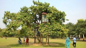 Nuhash Polli, Gazipur. নুহাশ পল্লী, গাজীপুর।