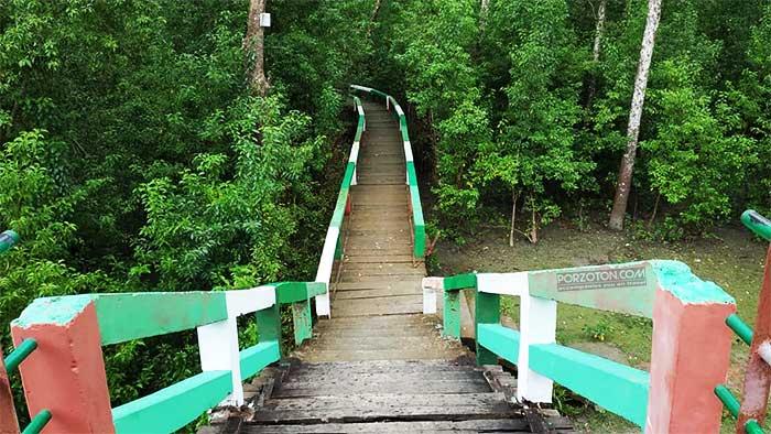 Haringhata Forest Trail, Pathorghata, Barguna